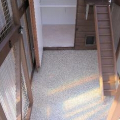 Veterinary Floor Coatings Shildon County Durham