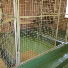 Seamless Dog Kennel Flooring Systems County Durham